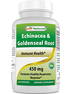 echinacea goldenseal: Echinacea Goldenseal Root -250 Caps by Best Naturals