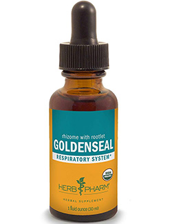 echinacea goldenseal: Goldenseal Respiratory System - 1 Ounce by Herb Pharm