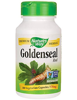 echinacea goldenseal: Goldenseal Root- 100 Capsules by Nature's Way