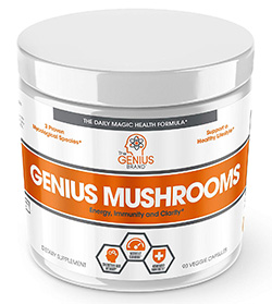 best mushroom supplements: the best mushroom supplement on the market