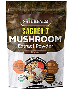 best mushroom supplements: the best powder form of mushroom