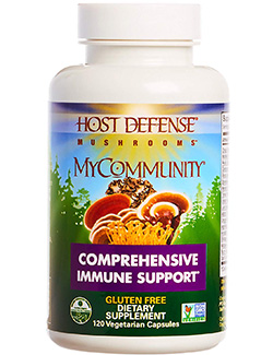 best mushroom supplements: an amazing blend you can't avoid