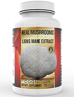 best mushroom supplements: it has a lot of benefits to offer