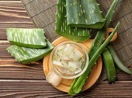 aloe vera for natural hair: 8 Aloe Vera Treatments for Natural Hair