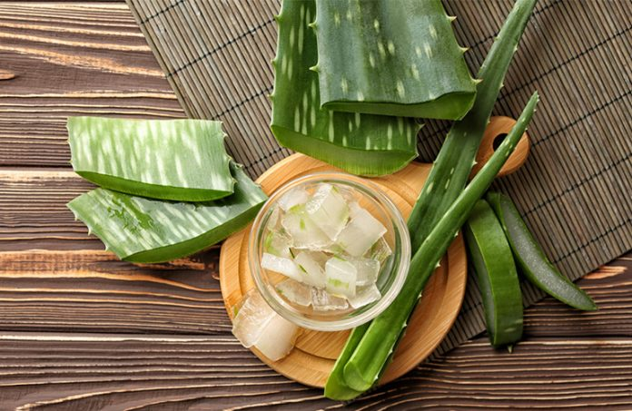 aloe vera for natural hair: 8 Aloe Vera Treatments for Natural Hair