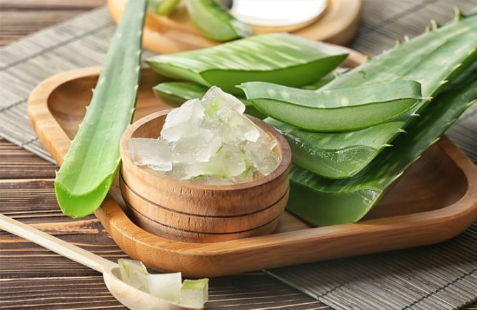 aloe vera recipe for skin: Keep Your Skin fresh