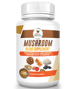 best mushroom supplements:
