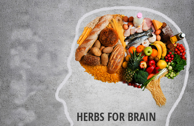 17 Herbs for Brain to Enhance Your Cognitive Function, Mood
