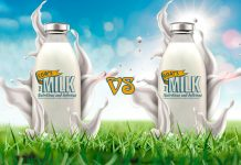 Differences Between Cow's Milk vs Goat's Milk for Babies