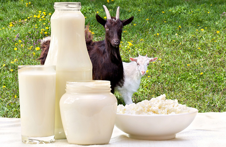 Homemade Goat Milk Formula Recipe | See How My Baby Thrived on This Recipe!