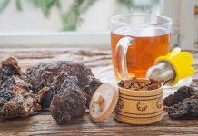 mushroom tea chaga: