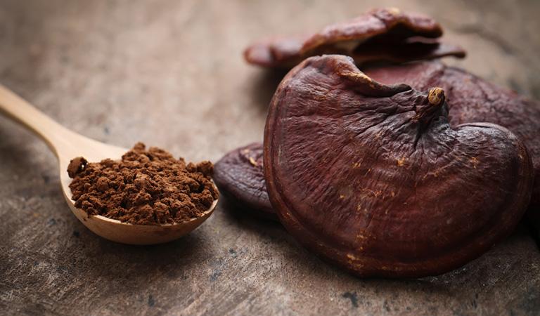 Reishi Mushroom Doses