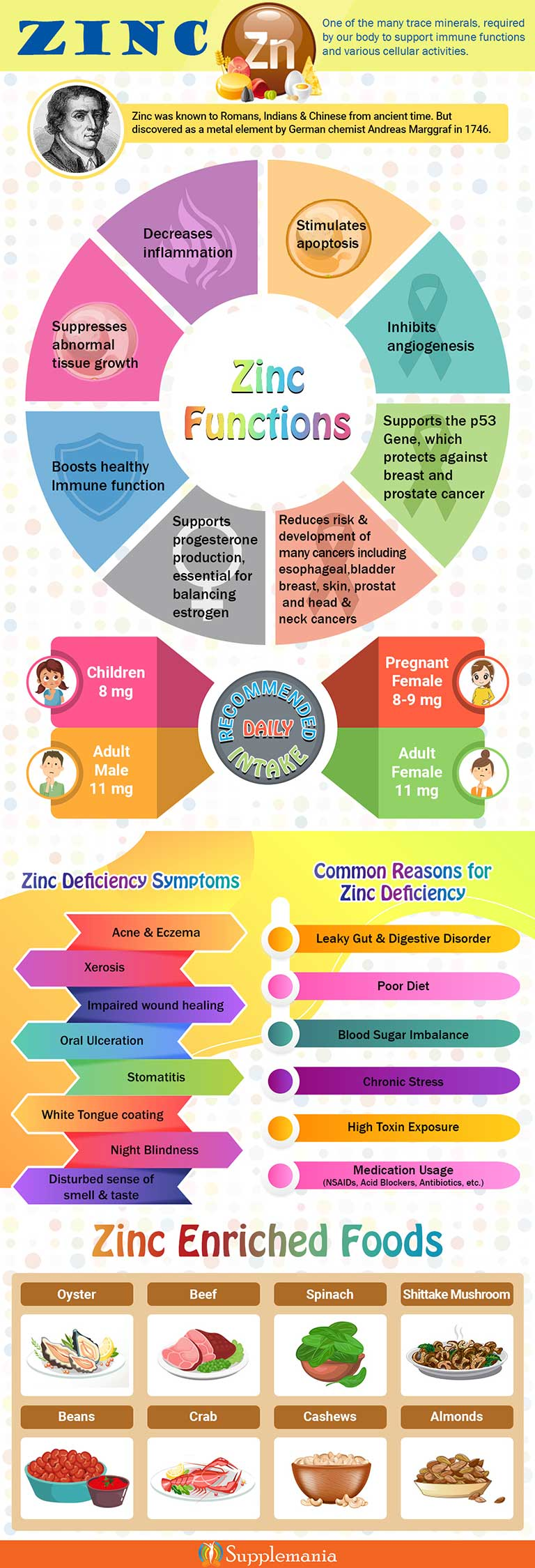 Zinc: Functions, Deficiency & Sources; Zinc Infographic
