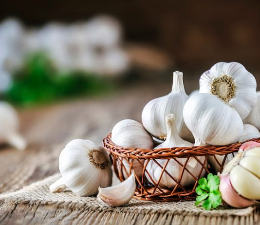 How long is garlic good for: